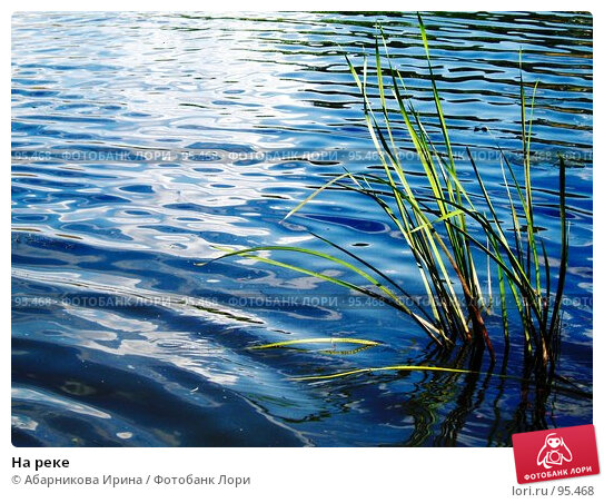 На реке, фото № 95468, снято 15 июля 2007 г. (c) Абарникова Ирина / Фотобанк Лори