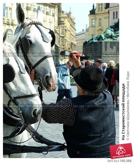 На Староместской площади, фото № 186084, снято 7 мая 2006 г. (c) Светлана Шушпанова / Фотобанк Лори