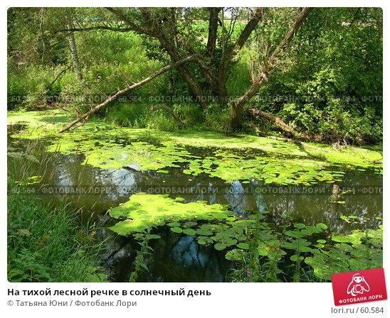На тихой лесной речке в солнечный день, фото № 60584, снято 24 июля 2005 г. (c) Татьяна Юни / Фотобанк Лори