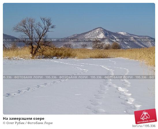 Купить «На замерзшем озере», фото № 195336, снято 27 января 2008 г. (c) Олег Рубик / Фотобанк Лори