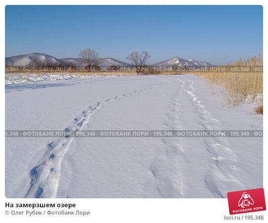 На замерзшем озере, фото № 195348, снято 27 января 2008 г. (c) Олег Рубик / Фотобанк Лори