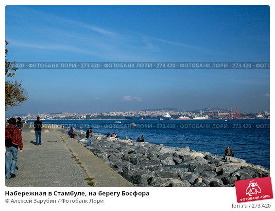 Набережная в Стамбуле, на берегу Босфора, фото № 273420, снято 4 ноября 2007 г. (c) Алексей Зарубин / Фотобанк Лори