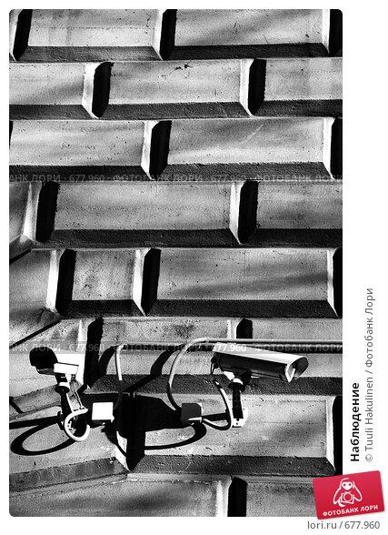 Наблюдение. Стоковое фото, фотограф Tuuli Hakulinen / Фотобанк Лори