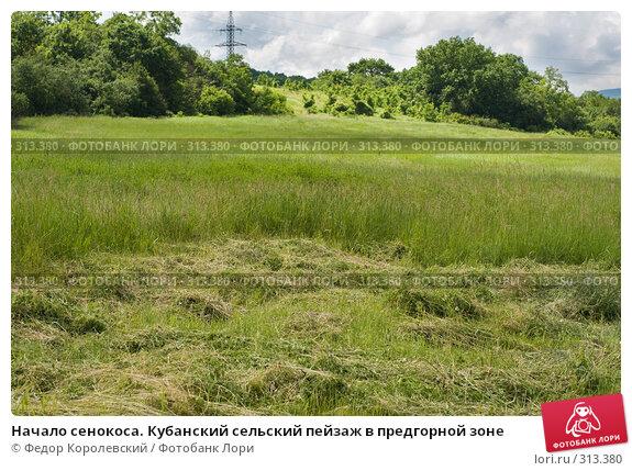 Начало сенокоса. Кубанский сельский пейзаж в предгорной зоне, фото № 313380, снято 4 июня 2008 г. (c) Федор Королевский / Фотобанк Лори