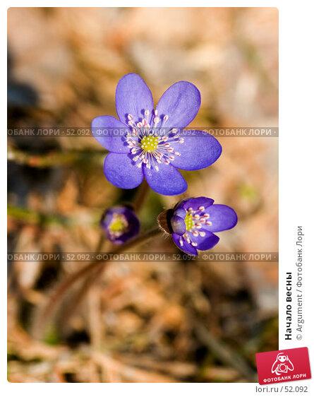 Начало весны, фото № 52092, снято 2 мая 2006 г. (c) Argument / Фотобанк Лори