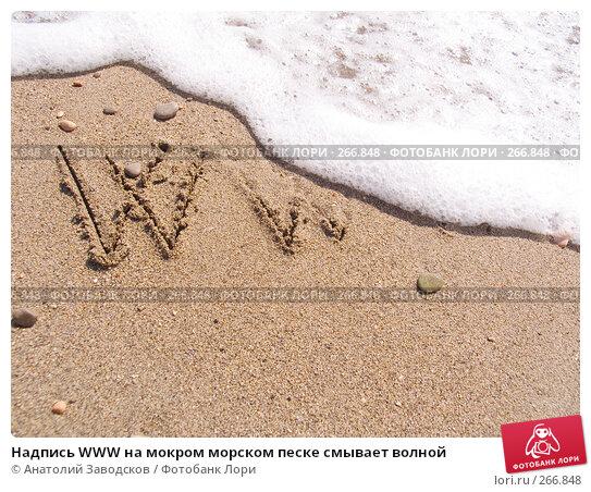 Надпись WWW на мокром морском песке смывает волной, фото № 266848, снято 14 сентября 2006 г. (c) Анатолий Заводсков / Фотобанк Лори