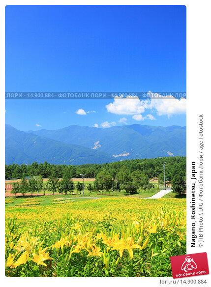 Купить «Nagano, Koshinetsu, Japan», фото № 14900884, снято 18 июня 2018 г. (c) age Fotostock / Фотобанк Лори