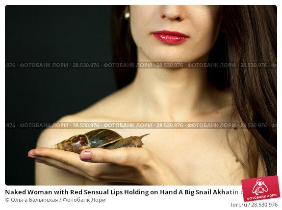 Купить «Naked Woman with Red Sensual Lips Holding on Hand A Big Snail Akhatin on Black Background in Studio. Cosmetological Procedure. Spa Concept», фото № 28530976, снято 31 мая 2018 г. (c) Ольга Балынская / Фотобанк Лори