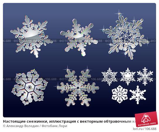 Настоящие снежинки, иллюстрация с векторным обтравочным контуром на синем фоне, иллюстрация № 106688 (c) Александр Володин / Фотобанк Лори