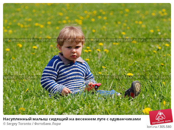 Купить «Насупленный малыш сидящий на весеннем луге с одуванчиками», фото № 305580, снято 11 мая 2008 г. (c) Sergey Toronto / Фотобанк Лори
