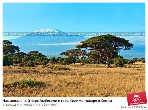 Купить «Национальный парк Амбосели и гора Килиманджаро в Кении», фото № 23454864, снято 5 января 2012 г. (c) Эдуард Кислинский / Фотобанк Лори