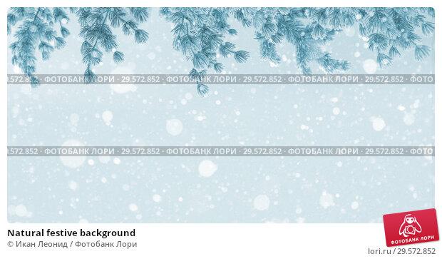 Купить «Natural festive background», фото № 29572852, снято 1 декабря 2018 г. (c) Икан Леонид / Фотобанк Лори