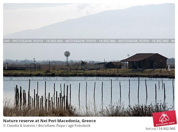 Купить «Nature reserve at Nei Pori Macedonia, Greece», фото № 14902960, снято 25 декабря 2011 г. (c) age Fotostock / Фотобанк Лори