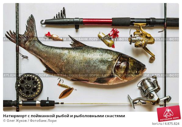 фото рыба под удочками