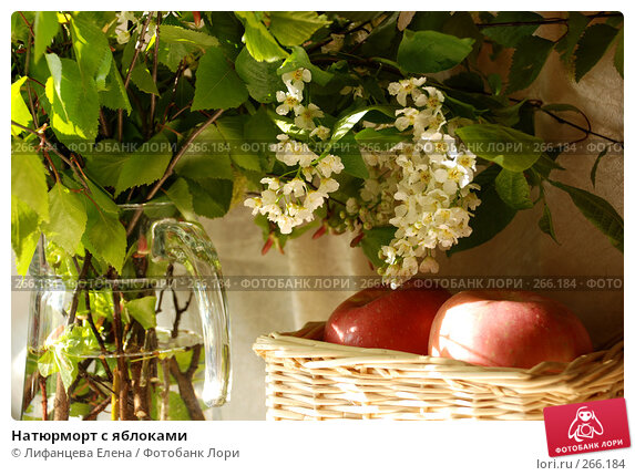 Натюрморт с яблоками, фото № 266184, снято 27 апреля 2008 г. (c) Лифанцева Елена / Фотобанк Лори