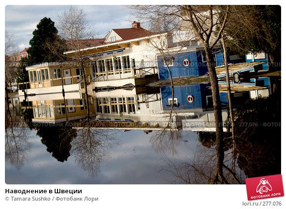 Наводнение в Швеции, фото № 277076, снято 6 мая 2008 г. (c) Tamara Sushko / Фотобанк Лори