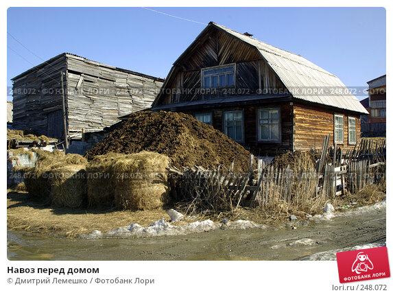 Купить «Навоз перед домом», фото № 248072, снято 2 апреля 2008 г. (c) Дмитрий Лемешко / Фотобанк Лори