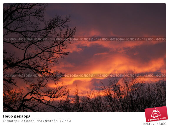 Небо декабря, фото № 142000, снято 7 декабря 2007 г. (c) Екатерина Соловьева / Фотобанк Лори