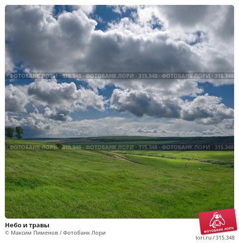 Небо и травы, фото № 315348, снято 15 мая 2008 г. (c) Максим Пименов / Фотобанк Лори