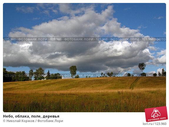 Небо, облака, поле, деревья, фото № 123960, снято 16 июня 2007 г. (c) Николай Коржов / Фотобанк Лори