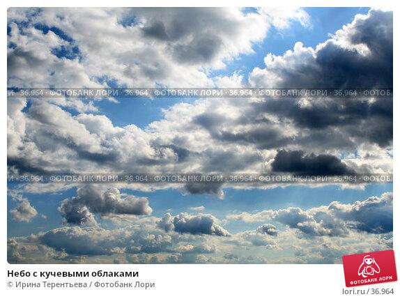 Небо с кучевыми облаками, эксклюзивное фото № 36964, снято 2 июля 2006 г. (c) Ирина Терентьева / Фотобанк Лори