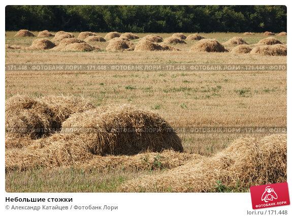 Купить «Небольшие стожки», фото № 171448, снято 18 августа 2007 г. (c) Александр Катайцев / Фотобанк Лори