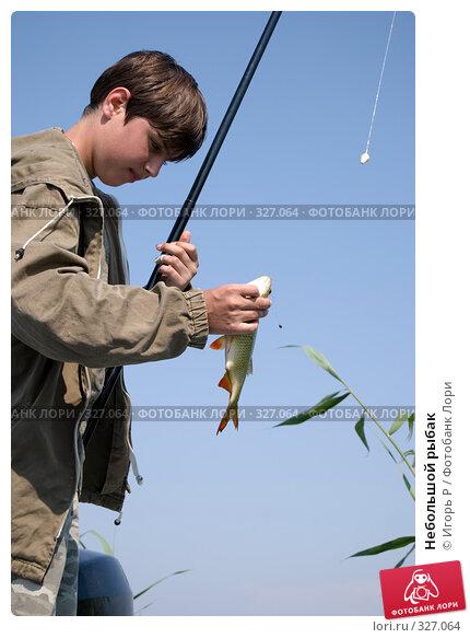Небольшой рыбак, фото № 327064, снято 13 июня 2008 г. (c) Игорь Р / Фотобанк Лори