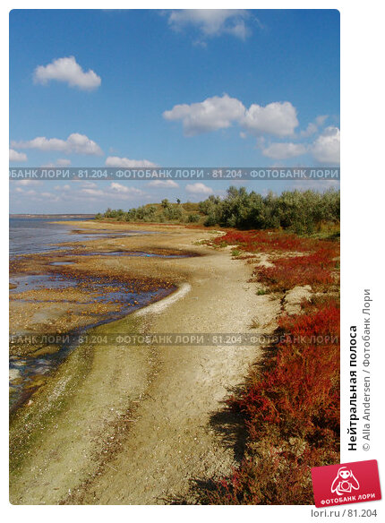 Нейтральная полоса, фото № 81204, снято 8 октября 2006 г. (c) Alla Andersen / Фотобанк Лори