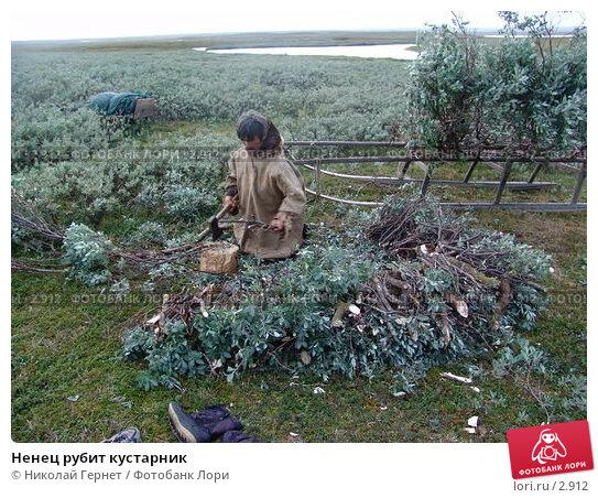 Ненец рубит кустарник, фото № 2912, снято 9 августа 2005 г. (c) Николай Гернет / Фотобанк Лори