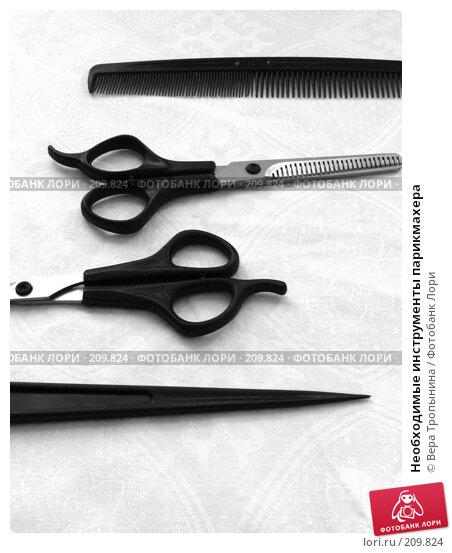 Купить «Необходимые инструменты парикмахера», фото № 209824, снято 19 февраля 2008 г. (c) Вера Тропынина / Фотобанк Лори