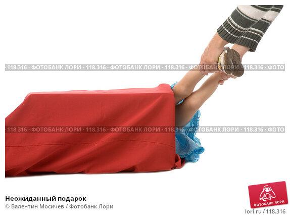 Неожиданный подарок, фото № 118316, снято 22 сентября 2007 г. (c) Валентин Мосичев / Фотобанк Лори