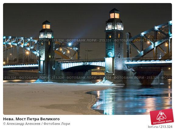 Нева. Мост Петра Великого, эксклюзивное фото № 213324, снято 21 февраля 2008 г. (c) Александр Алексеев / Фотобанк Лори
