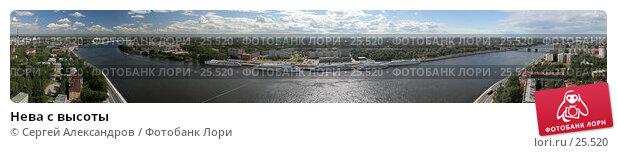 Нева с высоты, фото № 25520, снято 23 октября 2016 г. (c) Сергей Александров / Фотобанк Лори