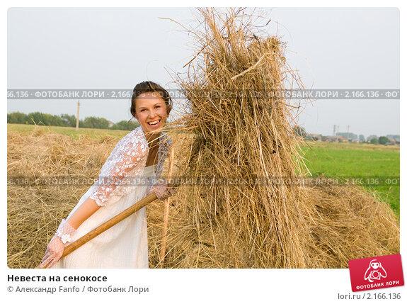 Купить «Невеста на сенокосе», фото № 2166136, снято 8 августа 2010 г. (c) Александр Fanfo / Фотобанк Лори
