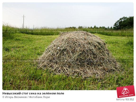 Невысокий стог сена на зелёном поле, фото № 83552, снято 16 июня 2007 г. (c) Игорь Веснинов / Фотобанк Лори