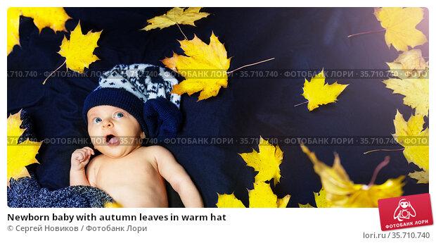 Newborn baby with autumn leaves in warm hat. Стоковое фото, фотограф Сергей Новиков / Фотобанк Лори