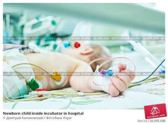 Купить «Newborn child inside incubator in hospital», фото № 26695048, снято 21 февраля 2017 г. (c) Дмитрий Калиновский / Фотобанк Лори