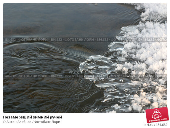 Незамерзший зимний ручей, фото № 184632, снято 8 января 2008 г. (c) Антон Алябьев / Фотобанк Лори
