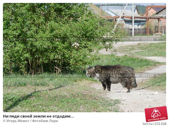 Ни пяди своей земли не отдадим..., фото № 272528, снято 4 мая 2008 г. (c) Игорь Момот / Фотобанк Лори