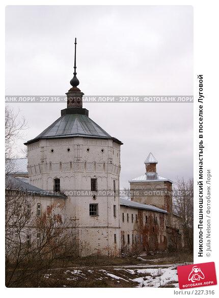 Николо-Пешношский монастырь в поселке Луговой, фото № 227316, снято 15 марта 2008 г. (c) Julia Nelson / Фотобанк Лори