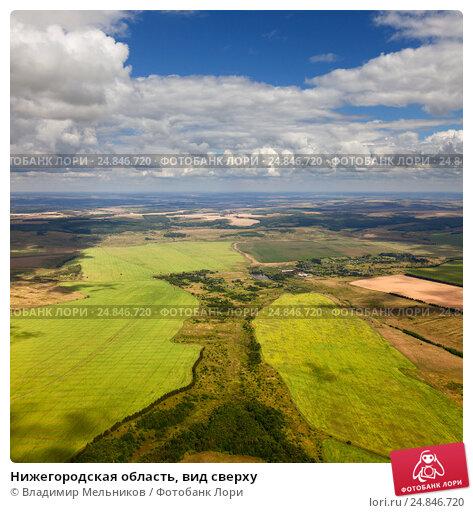 Нижегородская область, вид сверху, фото № 24846720, снято 23 июля 2013 г. (c) Владимир Мельников / Фотобанк Лори