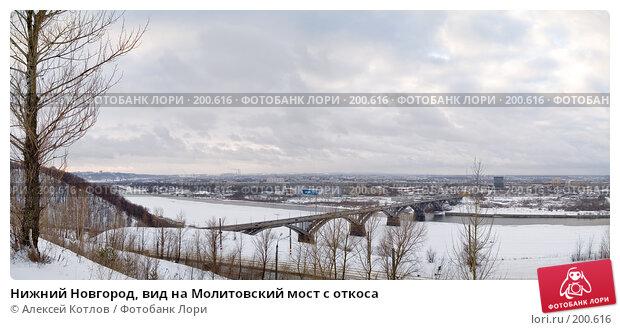 Купить «Нижний Новгород, вид на Молитовский мост с откоса», эксклюзивное фото № 200616, снято 22 декабря 2007 г. (c) Алексей Котлов / Фотобанк Лори