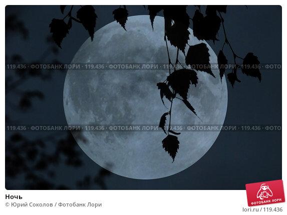 Ночь, фото № 119436, снято 9 октября 2007 г. (c) Юрий Соколов / Фотобанк Лори