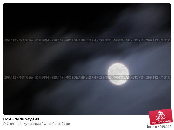 Ночь полнолуния, фото № 299112, снято 19 января 2017 г. (c) Светлана Кучинская / Фотобанк Лори
