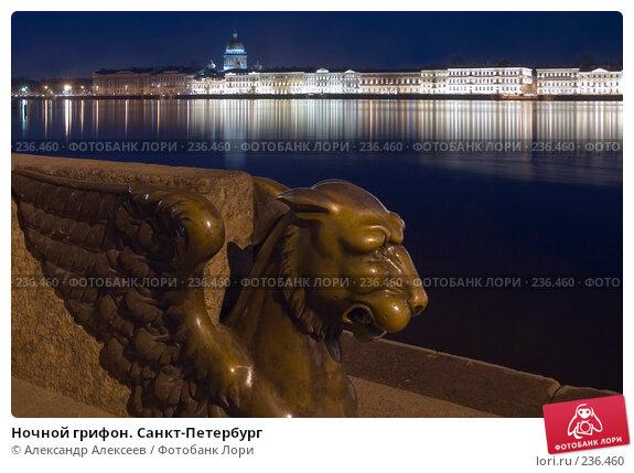 Ночной грифон. Санкт-Петербург, эксклюзивное фото № 236460, снято 12 января 2007 г. (c) Александр Алексеев / Фотобанк Лори