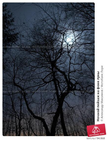Купить «Ночной пейзаж на фоне луны», фото № 94868, снято 2 декабря 2006 г. (c) Александр Максимов / Фотобанк Лори
