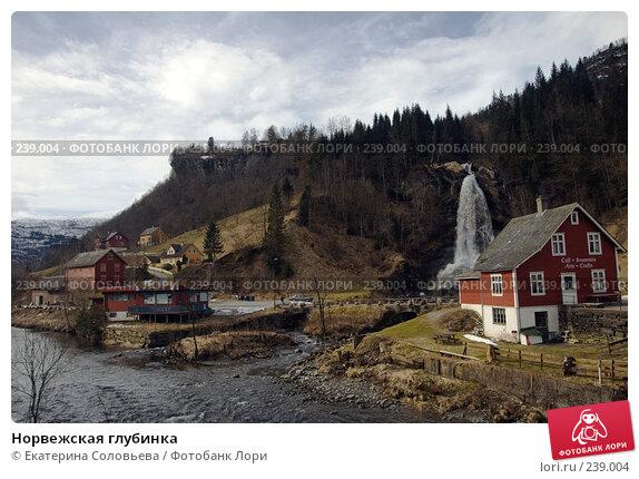 Купить «Норвежская глубинка», фото № 239004, снято 12 марта 2008 г. (c) Екатерина Соловьева / Фотобанк Лори