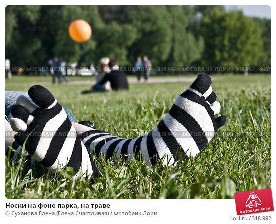 Купить «Носки на фоне парка, на траве», фото № 318992, снято 8 июня 2008 г. (c) Суханова Елена (Елена Счастливая) / Фотобанк Лори