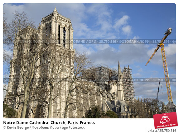 Notre Dame Cathedral Church, Paris, France. Стоковое фото, фотограф Kevin George / age Fotostock / Фотобанк Лори