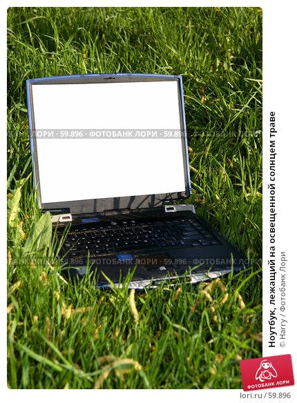Ноутбук, лежащий на освещенной солнцем траве, фото № 59896, снято 22 мая 2006 г. (c) Harry / Фотобанк Лори